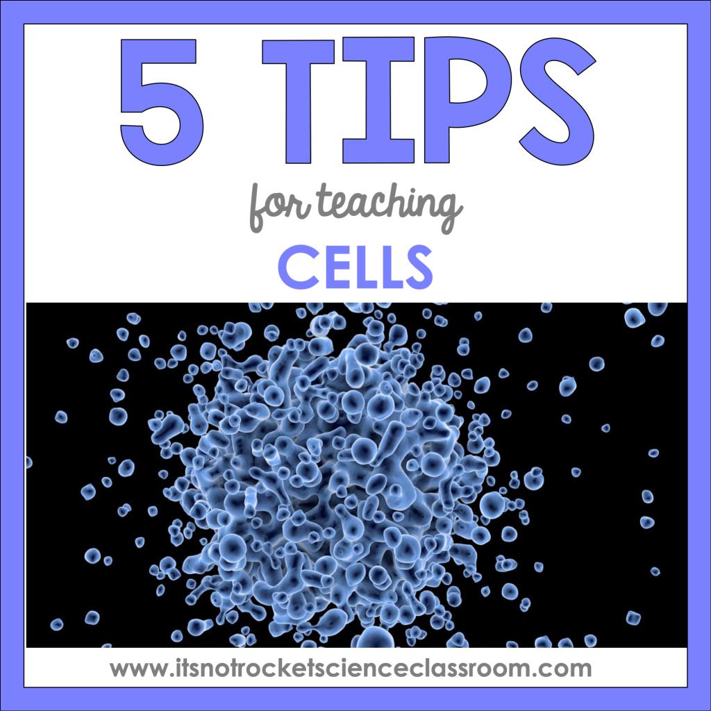 tips for teaching cells