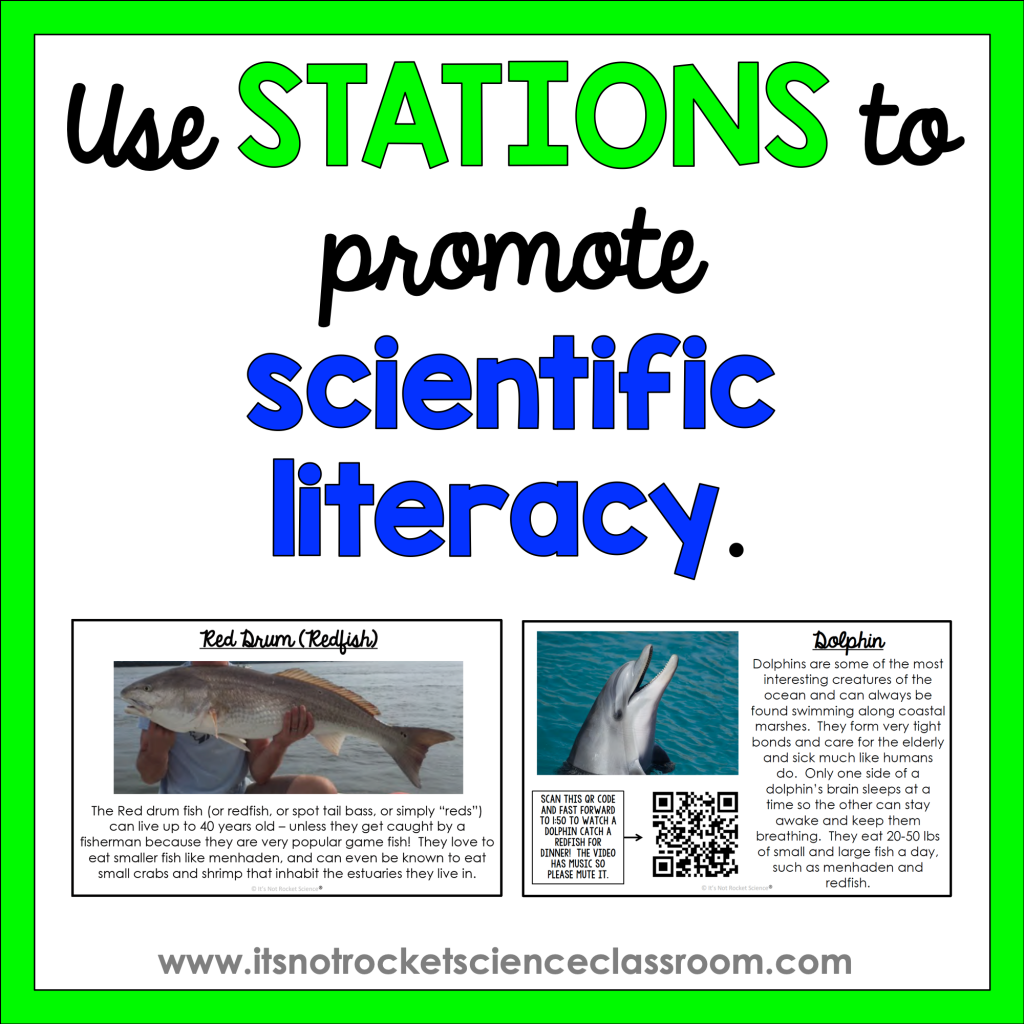 Use stations to promote scientific literacy.
