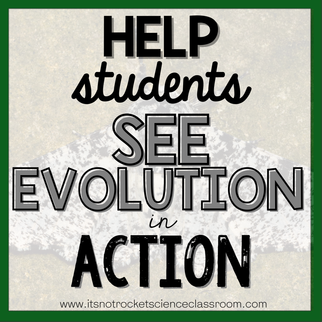 teaching-evolution-tip-3
