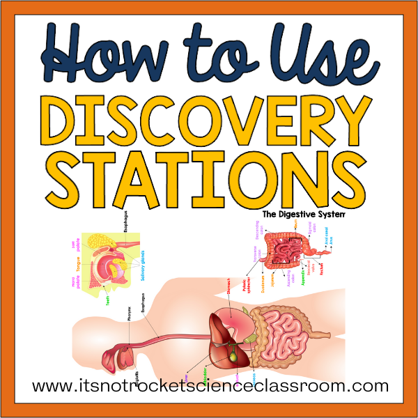 discovery stations
